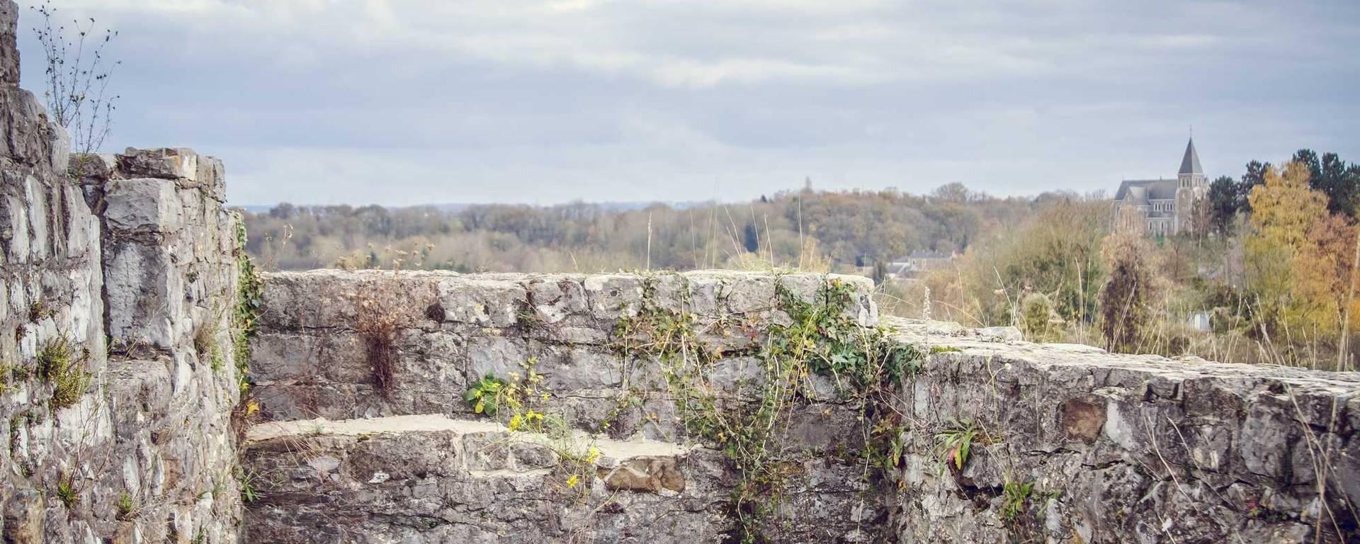 Vestiges du château féodal de Moha