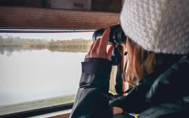 jeune femme observant les oiseaux avec des jumelles