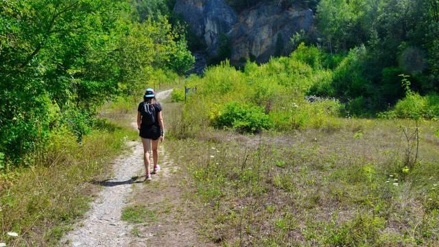 Une dame se promenant dans les bois