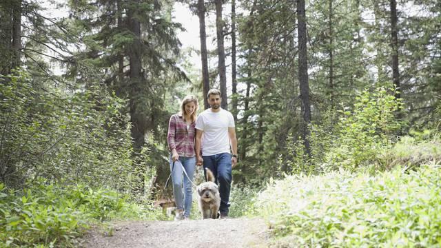 Un couple se promène avec leur chien