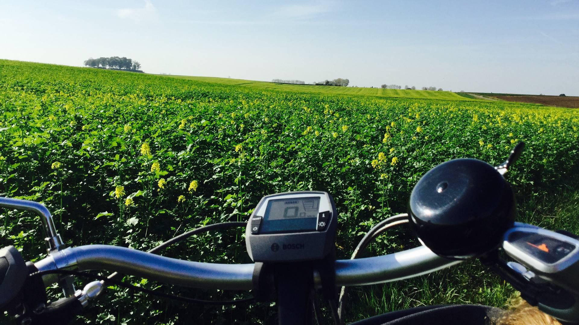 Vélo en Hesbaye - copyright GAL Jesuishesbignon.be