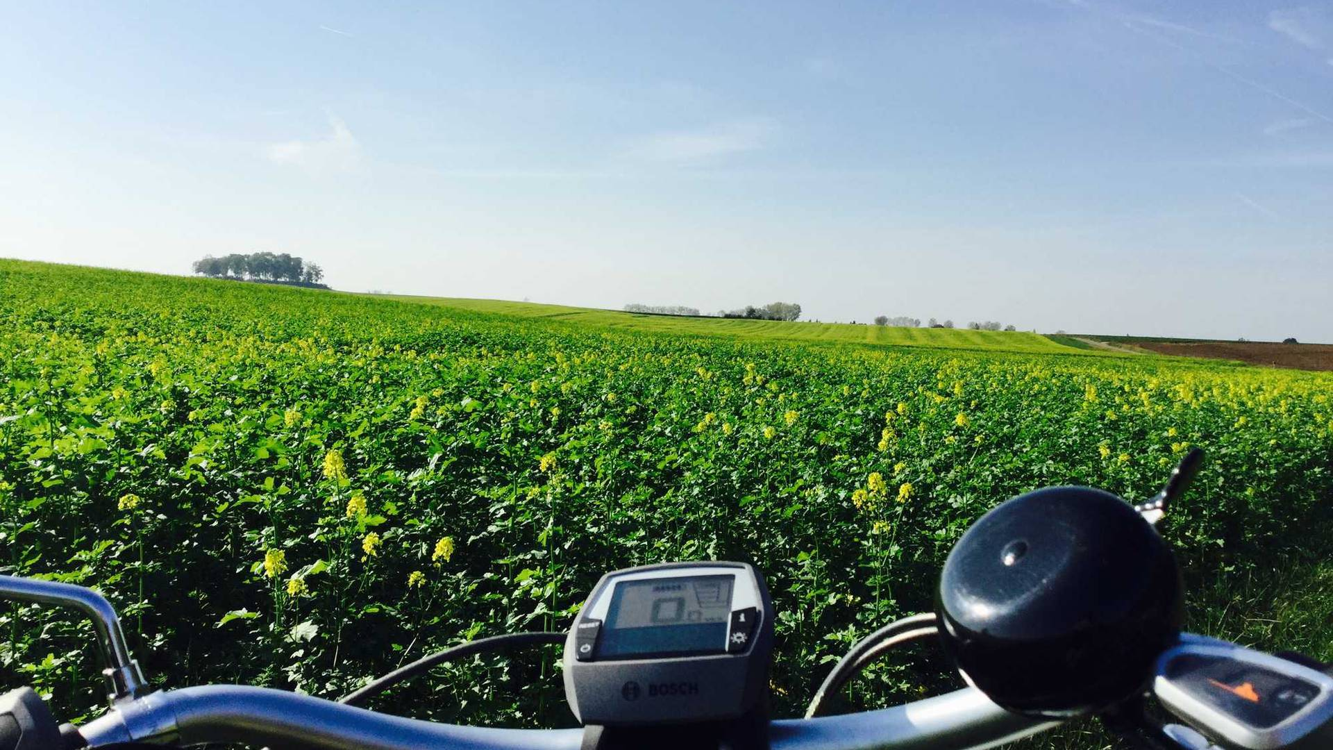 Vélo devant un paysage de champ