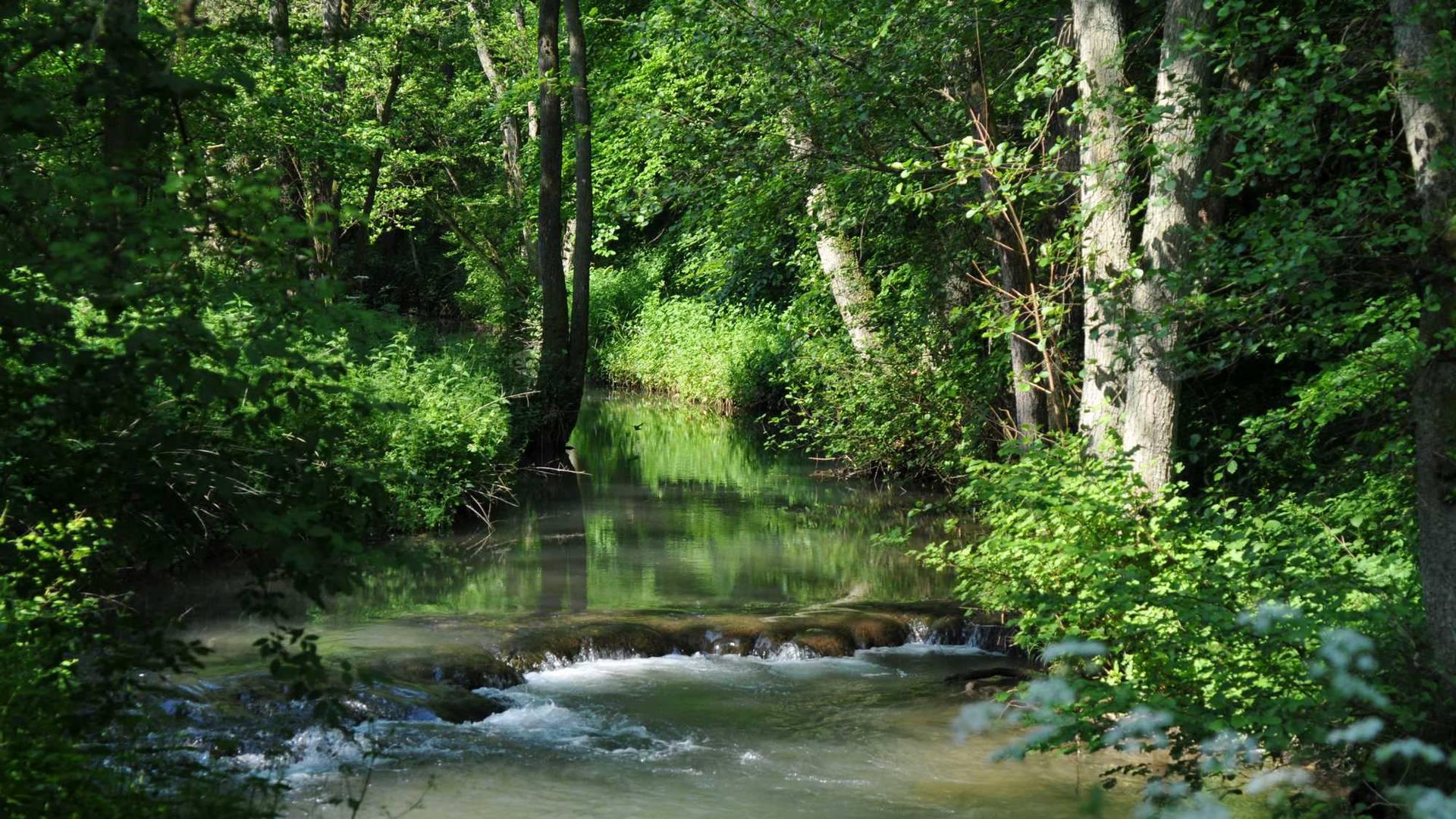 Le Hoyoux au Val Thibiemont - Copyright Philippe Mariage
