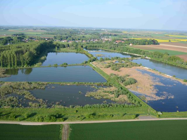 Réserve naturelle de Hollogne-sur-Geer