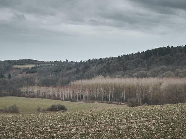 Paysage Burdinale-Mehaigne