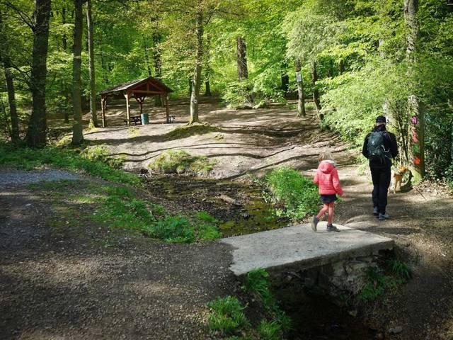 Un père et sa fille se promène dans les bois