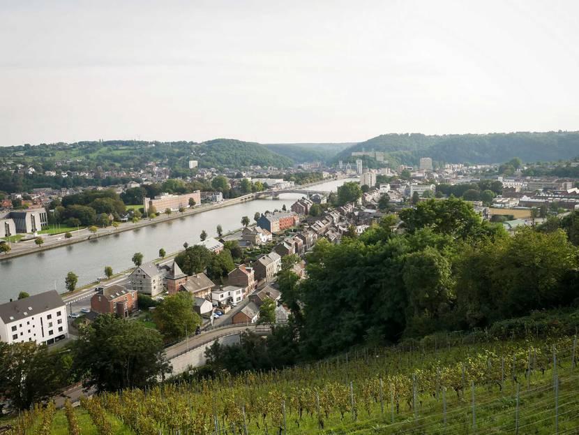 Vue sur la Meuse depuis le Clos Bois Marie