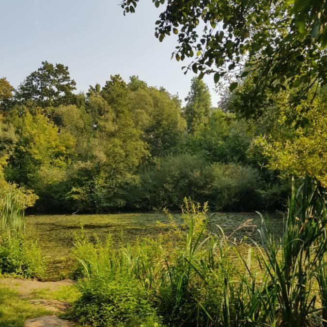 Zone naturelle de Grand-Axhe