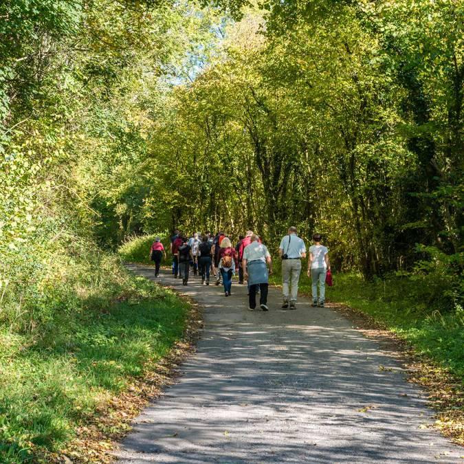 Promenade à Clavier  - Copyright C. Denoël