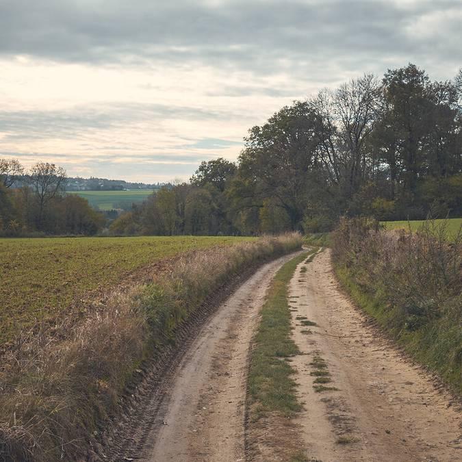 Sentier de terre