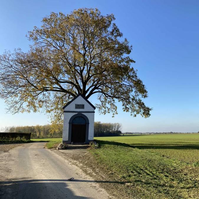 Chapelle devant un arbre
