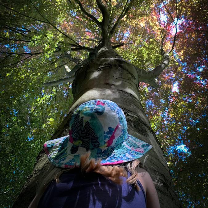 Une jeune fille regardant un arbre
