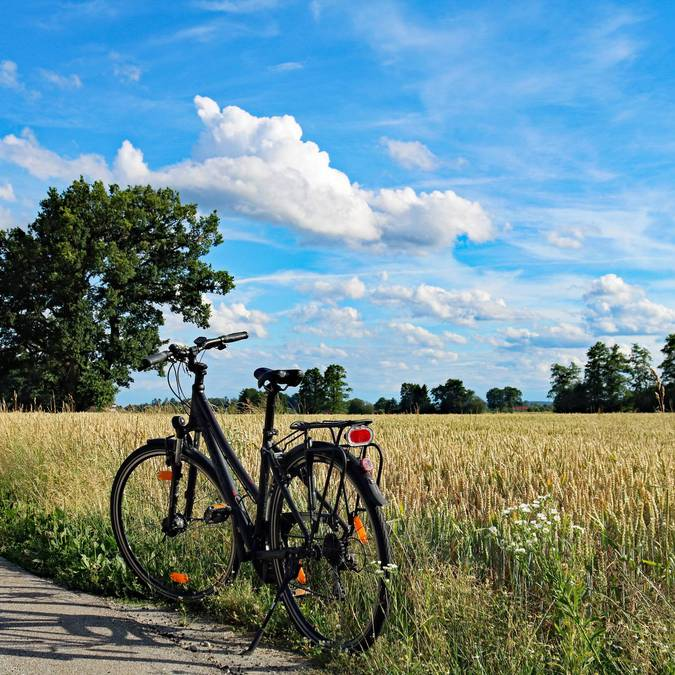 Vélo au bord d'un champ